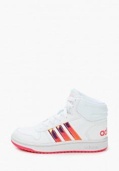 Кеды, adidas, цвет: белый. Артикул: AD002AGJMGO6. Девочкам / Спорт