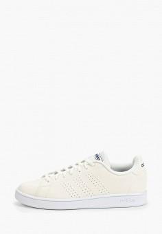 Кеды, adidas, цвет: белый. Артикул: AD002AMIYOY7. Обувь / Кроссовки и кеды