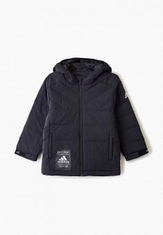 Пуховик, adidas, цвет: черный. Артикул: AD002EBFKOQ7. Мальчикам / Одежда / Верхняя одежда / Куртки и пуховики