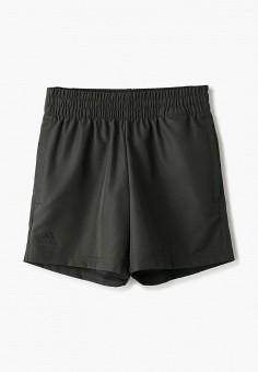 Шорты спортивные, adidas, цвет: хаки. Артикул: AD002EBHZUL7. Мальчикам / Одежда