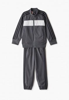 Костюм спортивный, adidas, цвет: серый. Артикул: AD002EBJMBC3. Мальчикам / Спорт