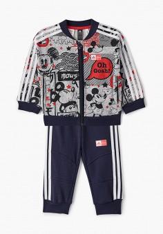 Костюм спортивный, adidas, цвет: серый, синий. Артикул: AD002EBJMBG4. Новорожденным / Одежда