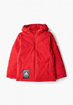 Пуховик, adidas, цвет: красный. Артикул: AD002EKFKOQ8. Мальчикам / Одежда / Верхняя одежда / Куртки и пуховики