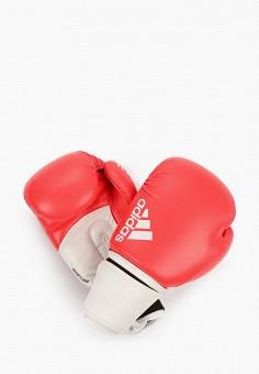 Перчатки боксерские, adidas Combat, цвет: красный. Артикул: AD015DUIHPR7. Аксессуары / Перчатки и варежки