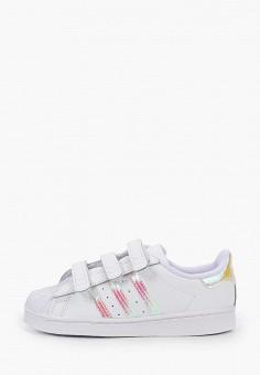 Кеды, adidas Originals, цвет: белый. Артикул: AD093AKKBDQ1.
