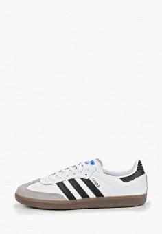 Кеды, adidas Originals, цвет: белый. Артикул: AD093AMEDUQ8.