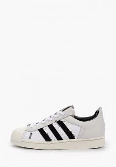 Кеды, adidas Originals, цвет: белый. Артикул: AD093AUHLCG9.