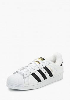 Кеды, adidas Originals, цвет: белый. Артикул: AD093AWDGIS1.