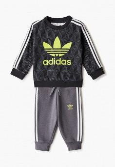 Костюм спортивный, adidas Originals, цвет: серый, черный. Артикул: AD093EBJLVQ9. Новорожденным / Одежда