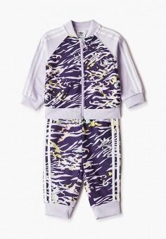 Костюм спортивный, adidas Originals, цвет: фиолетовый. Артикул: AD093EGJLVV4.