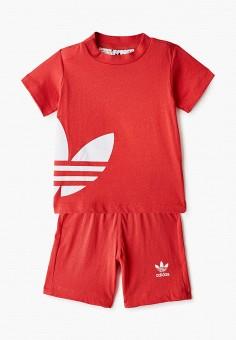 Костюм спортивный, adidas Originals, цвет: красный. Артикул: AD093EKIALU3. Новорожденным