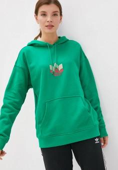 Худи, adidas Originals, цвет: зеленый. Артикул: AD093EWJMAJ1. Одежда / Толстовки и свитшоты