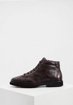 Ботинки, Aldo Brue, цвет: коричневый. Артикул: AL232AMKFGB6. Обувь / Ботинки