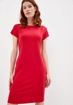 Платье, Armani Exchange, цвет: красный. Артикул: AR037EWJUOM9.