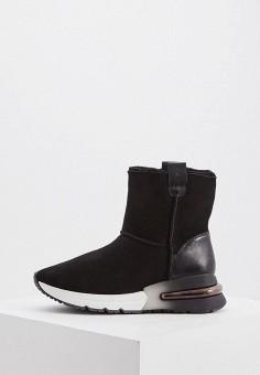 Полусапоги, Ash, цвет: черный. Артикул: AS069AWFPJU7. Обувь / Сапоги / Полусапоги