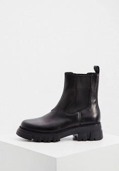 Ботинки, Ash, цвет: черный. Артикул: AS069AWJTQH3. Обувь / Ботинки / Челси