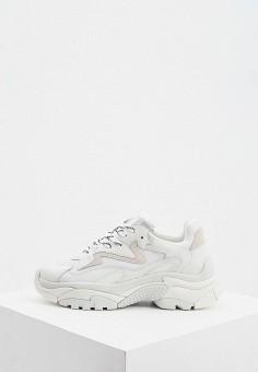 Кроссовки, Ash, цвет: белый. Артикул: AS069AWJTQJ8. Обувь / Кроссовки и кеды