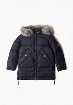 Пуховик, Baon, цвет: черный. Артикул: BA007EGKFZM7. Девочкам / Одежда / Верхняя одежда / Куртки и пуховики
