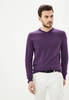 Пуловер, Baon, цвет: фиолетовый. Артикул: BA007EMIHGV4. Одежда / Джемперы, свитеры и кардиганы / Джемперы и пуловеры