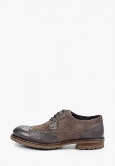 Туфли, Baltarini, цвет: коричневый. Артикул: BA082AMHRCT9. Обувь