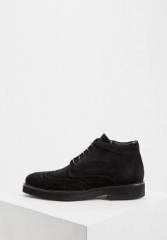 Ботинки, Baldinini, цвет: черный. Артикул: BA097AMFLEK8.