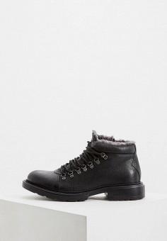 Ботинки, Baldinini, цвет: черный. Артикул: BA097AMFLEL1.