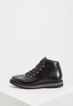 Ботинки, Baldinini, цвет: черный. Артикул: BA097AMFLEP5.