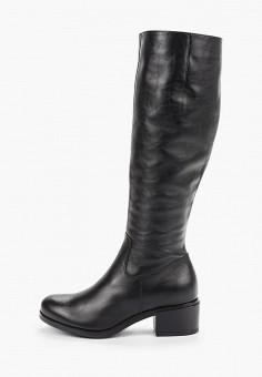 Сапоги, Belwest, цвет: черный. Артикул: BE096AWHDIP5. Обувь / Сапоги / Сапоги
