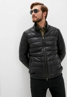Куртка кожаная, Blouson, цвет: черный. Артикул: BL033EMKKPA2. Одежда / Верхняя одежда / Кожаные куртки