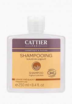 Шампунь, Cattier, цвет: . Артикул: CA061LWFLK83. Красота / Уход / Волосы
