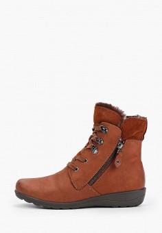 Ботинки, Caprice, цвет: коричневый. Артикул: CA107AWFNYM6. Обувь / Ботинки / Высокие ботинки