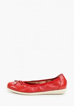 Балетки, Caprice, цвет: красный. Артикул: CA107AWIADF7. Обувь / Балетки