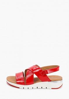 Сандалии, Caprice, цвет: красный. Артикул: CA107AWIAEU1. Обувь / Обувь с увеличенной полнотой