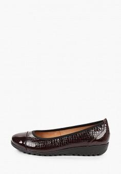 Балетки, Caprice, цвет: бордовый. Артикул: CA107AWJXUI3. Обувь / Обувь с увеличенной полнотой