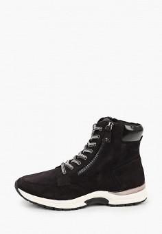 Ботинки, Caprice, цвет: черный. Артикул: CA107AWJXUP9. Обувь / Ботинки / Высокие ботинки