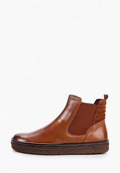 Ботинки, Caprice, цвет: коричневый. Артикул: CA107AWJXUT5. Обувь / Ботинки / Челси