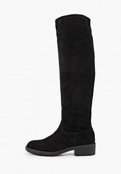 Ботфорты, Calipso, цвет: черный. Артикул: CA549AWGOIP6. Обувь / Сапоги / Ботфорты