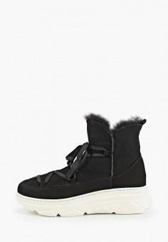 Полусапоги, Calipso, цвет: черный. Артикул: CA549AWHHYM6. Обувь / Сапоги / Полусапоги