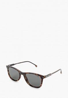 Очки солнцезащитные, Carrera, цвет: коричневый. Артикул: CA901DUIUGV7. Аксессуары / Очки