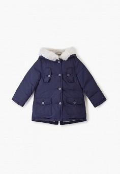 Пуховик, Chicco, цвет: синий. Артикул: CH001EGFSKB7. Девочкам / Одежда / Верхняя одежда / Куртки и пуховики