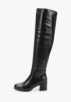 Ботфорты, Covani, цвет: черный. Артикул: CO012AWGBIX6. Обувь / Сапоги / Ботфорты