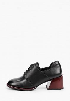 Ботильоны, Covani, цвет: черный. Артикул: CO012AWIVPX8. Обувь / Ботильоны