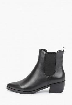 Ботильоны, Covani, цвет: черный. Артикул: CO012AWKETE0. Обувь / Ботинки / Челси