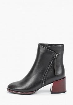 Ботильоны, Covani, цвет: черный. Артикул: CO012AWKETE4. Обувь / Ботильоны