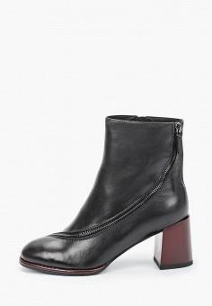 Ботильоны, Covani, цвет: черный. Артикул: CO012AWKETE7. Обувь / Ботильоны