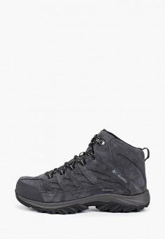 Ботинки трекинговые, Columbia, цвет: серый. Артикул: CO214AMGEWN1. Обувь / Ботинки