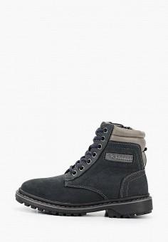 Ботинки, Crosby, цвет: синий. Артикул: CR004ABFOOH5. Мальчикам / Обувь / Ботинки