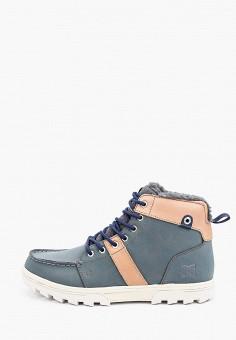 Ботинки, DC Shoes, цвет: серый. Артикул: DC329AMINRE7.