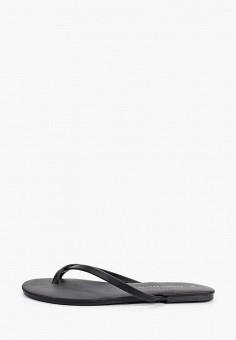Сабо, Dorothy Perkins, цвет: черный. Артикул: DO005AWINMN4. Обувь / Сабо и мюли