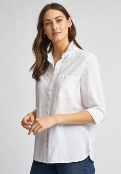 Рубашка, Dorothy Perkins, цвет: белый. Артикул: DO005EWIYZB0. Одежда / Блузы и рубашки / Рубашки